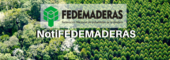 NotiFEDEMADERAS VF1